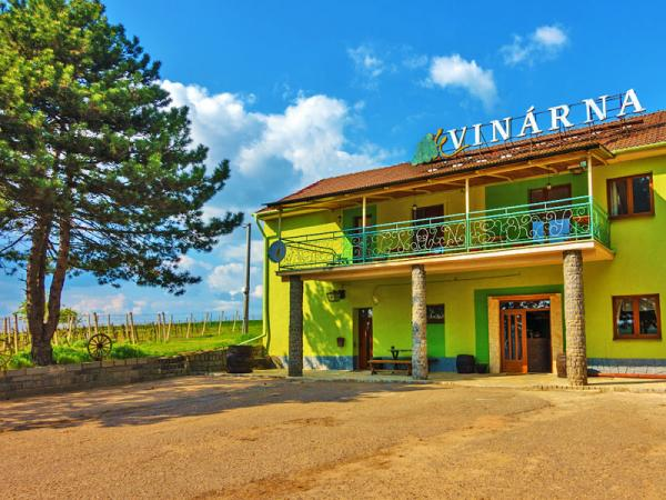 Jižní Morava v penzionu ve vinařské obci Čejč s degustací, lahví vína a polopenzí, i přes Silvestr