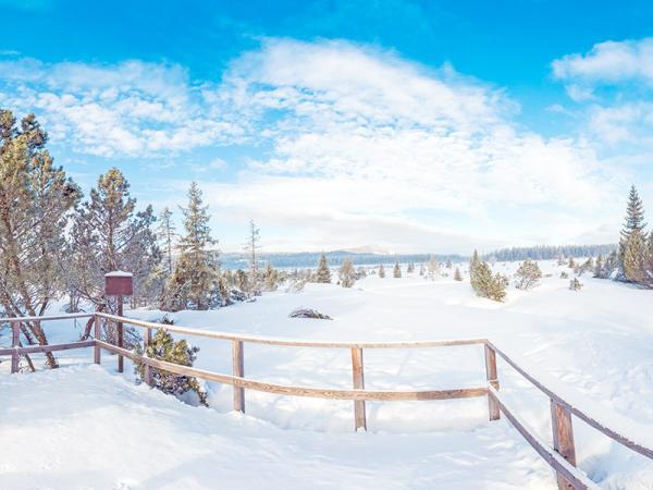 Šumava v hotelu nedaleko skiareálů se saunou, skipasem a polopenzí
