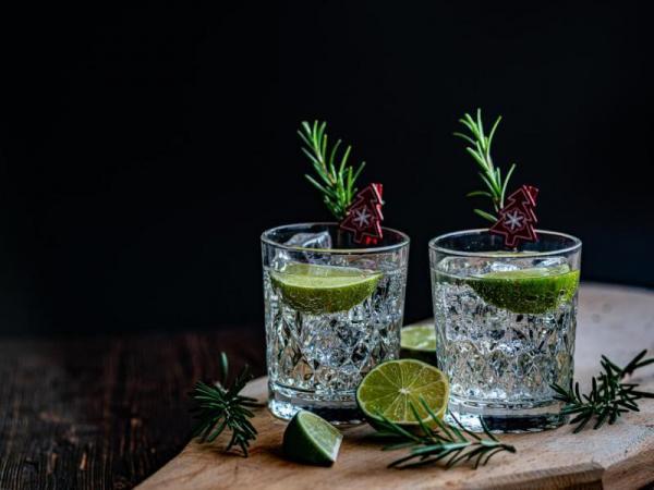 Domácí degustace ginu Celá ČR