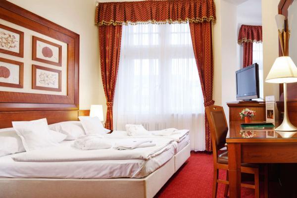 Ozdravný pobyt v lázeňském hotelu Smetana Vyšehrad**** v Karlových Varech s wellness a procedurami se stravováním dle variant
