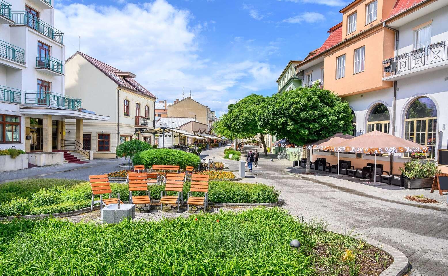 Penzion Alegro v nejoblíbenějším lázeňském městě Piešťany s all inclusive a procedurami
