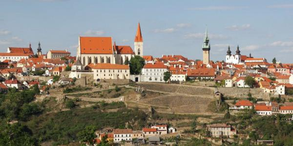 Jižní Morava s neomezenou konzumací vína v Hotelu Weiss, s poukazem na stravování v hodnotě 200 Kč a vstupem na rozhlednu či do pivovaru