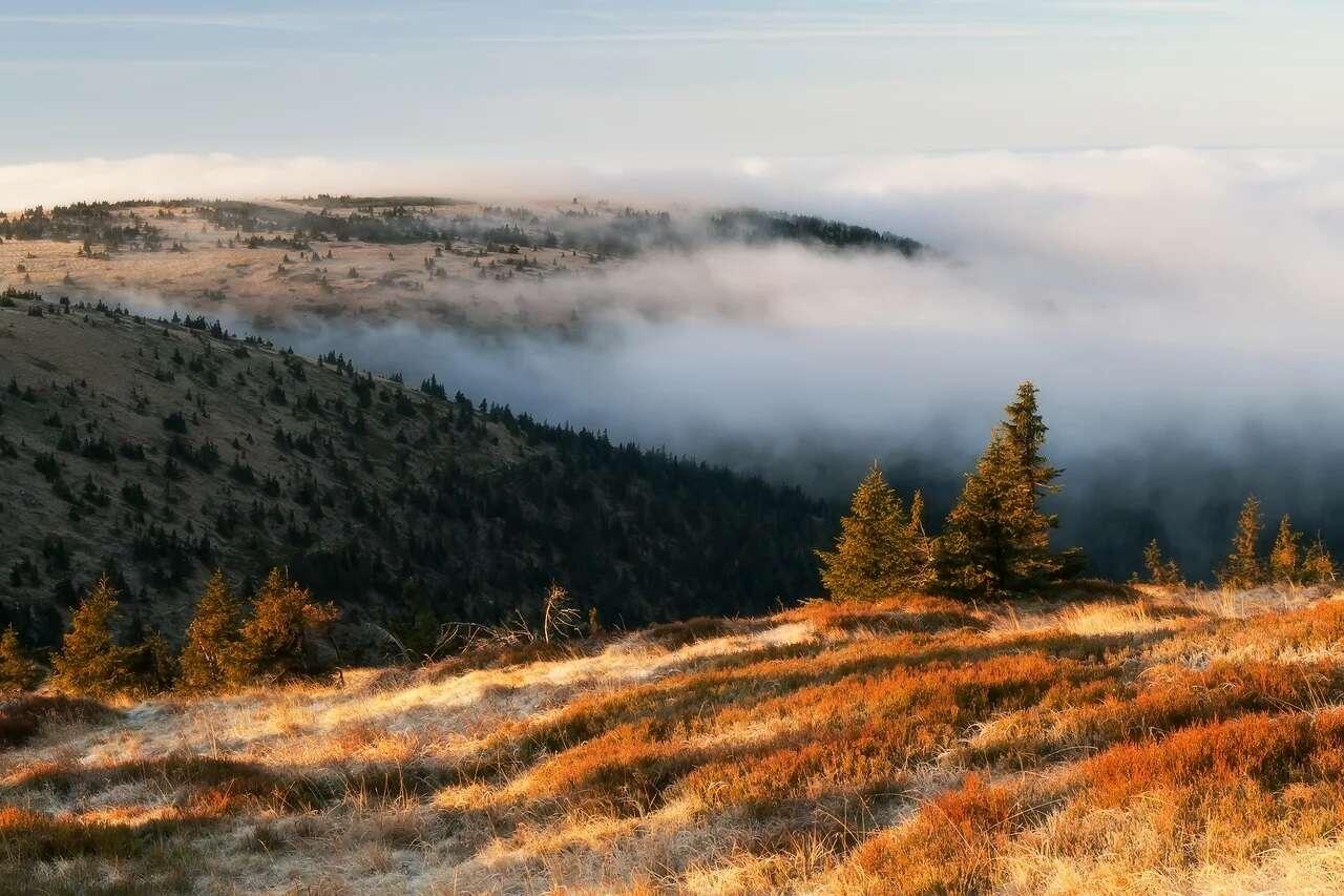 Nedotčená příroda Jeseníků jako na dlani v hotelu Zlatý Chlum pro dvě osoby až na 7 dní se snídaní či polopenzí a vstupem do sauny