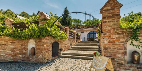 Jižní Morava v rodinném vinařství Krýsa s prohlídkou vinohradu, možností degustace, polopenzí a lahví vína jako dárek