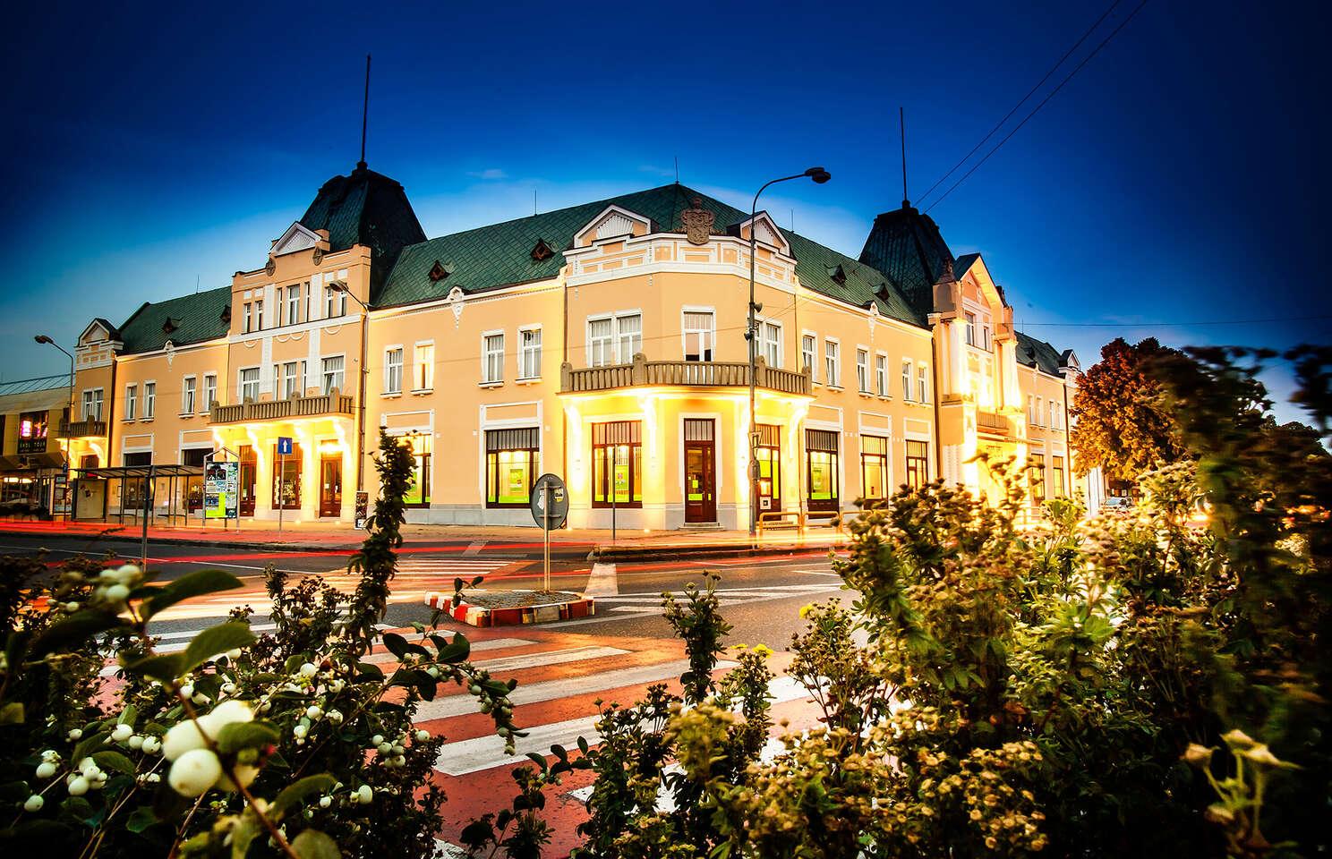 Relax s polopenzí v historickém hotelu Lev *** s možností využití wellness - přímo v centru města