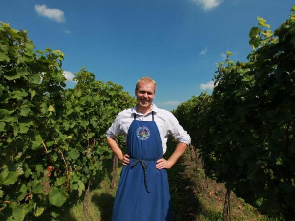 Domácí degustace moravských vín + bedna 6 lahví Celá ČR