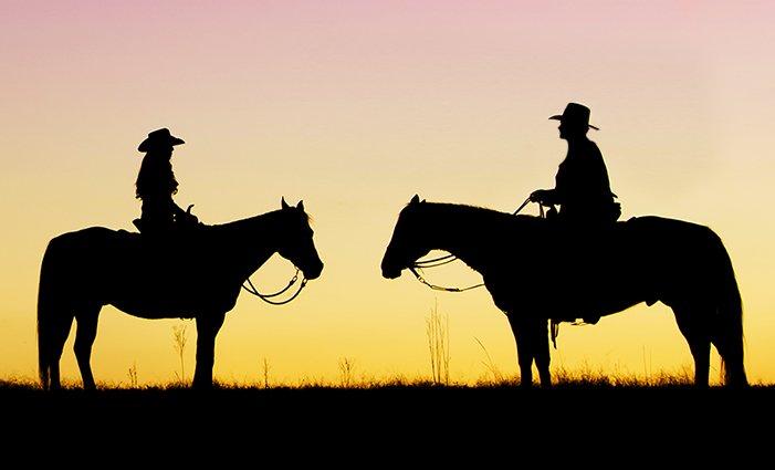 3–6denní pobyt u koní v penzionu Motešice na Slovensku pro 2 osoby s polopenzí