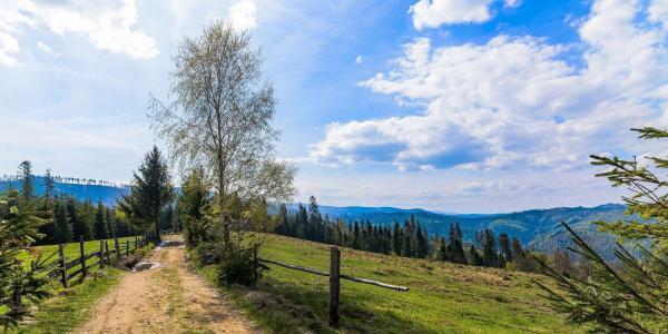 Od jara do zimy v Chatě Barborka v Horní Bečvě s polopenzí v blízkosti ski areálů i Stezky v korunách stromů